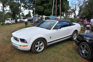 Gustavo's Mustang